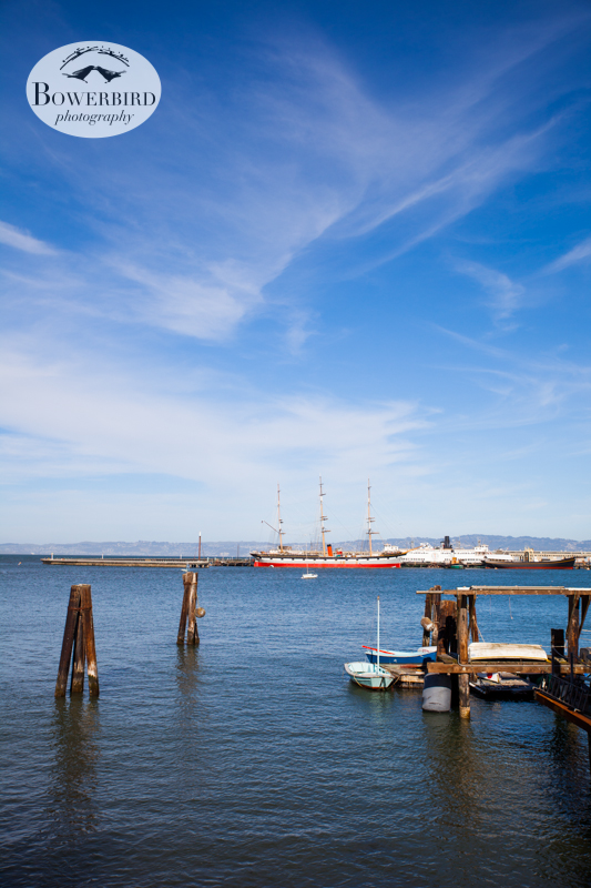Aquatic Park. © Bowerbird Photography 2013; Engagement Photography Site Visit, San Francisco.