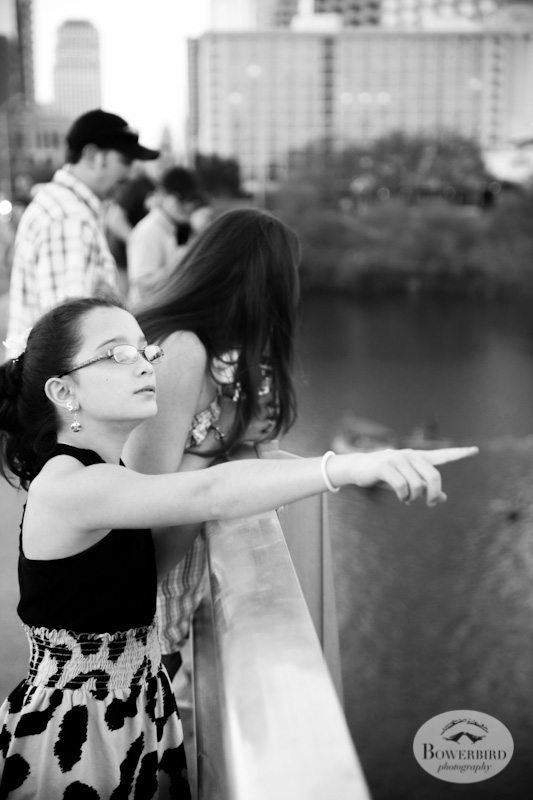 Watching the bats at sunset. © Bowerbird Photography, Austin and SXSW 2013 Photo.