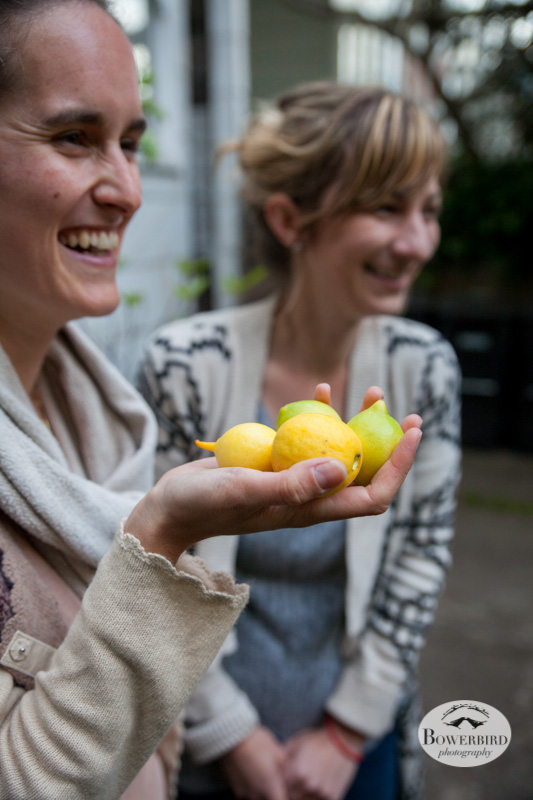 We picked meyer lemons in the backyard to dress the crab. © Bowerbird Photography 2013.