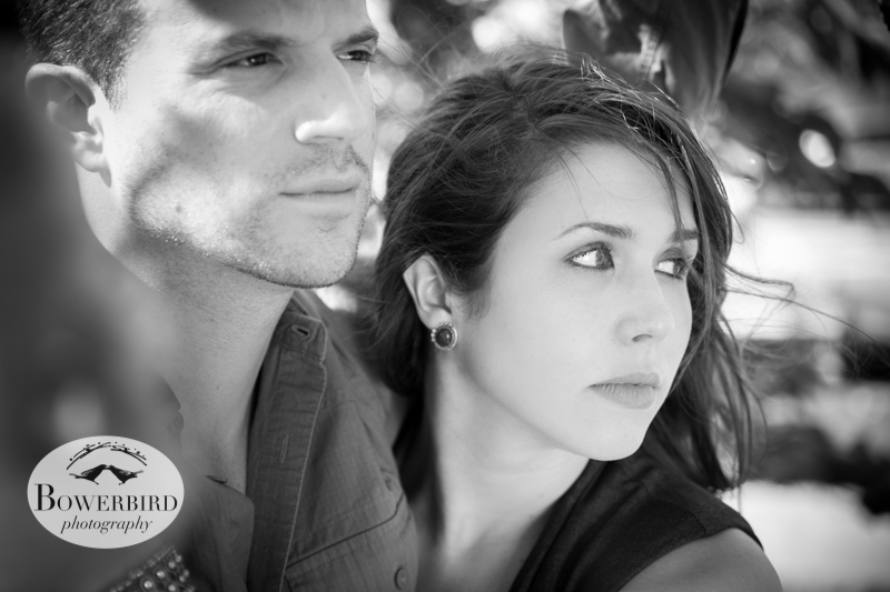 Gorgeous! © Bowerbird Photography 2013; Alamo Square, San Francisco Engagement Photo.