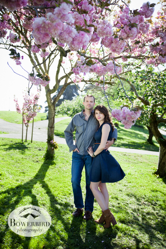 A bower of pink. © Bowerbird Photography 2013; Alamo Square, San Francisco Engagement Photo.