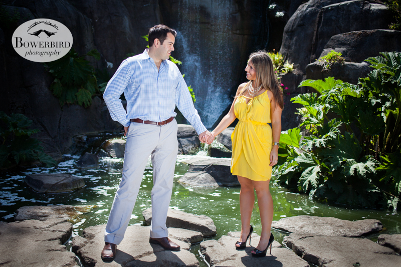 By the waterfall, hand in hand. © Bowerbird Photography 2013, San Francisco Engagement Photo at Stow Lake in Golden Gate Park.