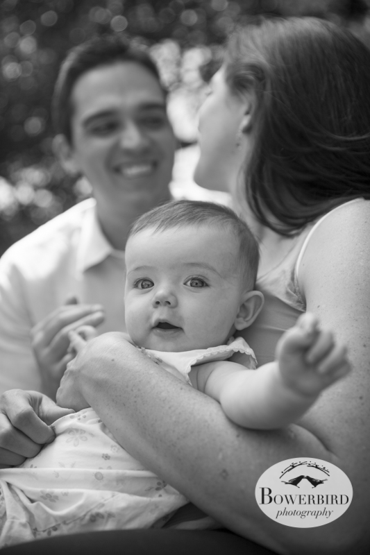 Berkeley Baby and Family Photography © Bowerbird Photography 2013.