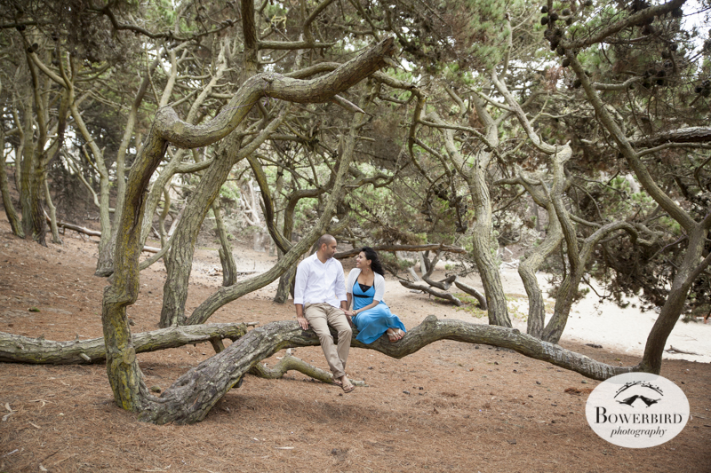 San Francisco Engagement Photo Session on Baker Beach. © Bowerbird Photography 2013.