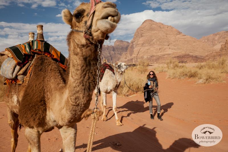 Wadi Rum, Jordan.© Bowerbird Photography, 2014