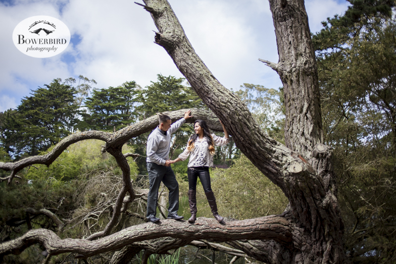 San Francisco Engagement Photo Session in Golden Gate Park at Stow Lake . © Bowerbird Photography, 2014