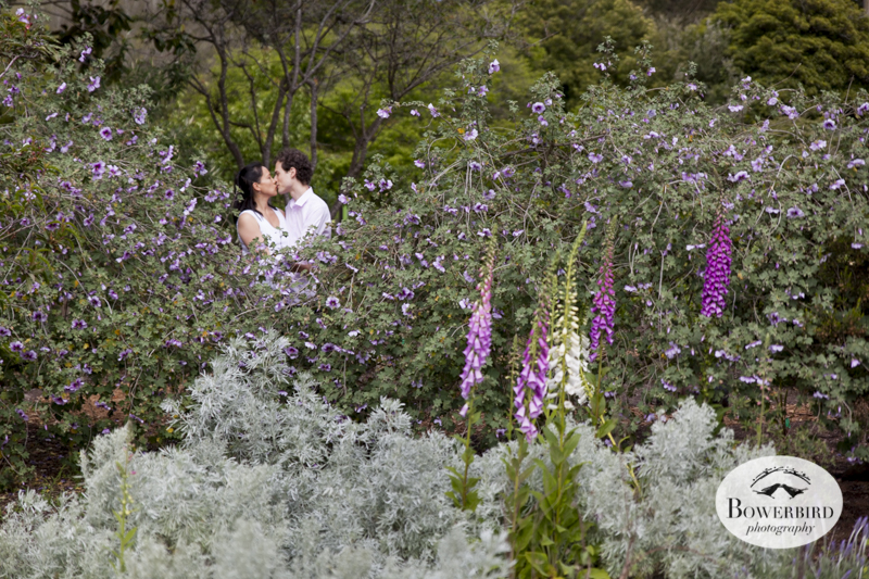 San Francisco Engagement Photo Session At The Botanical Gardens In Golden  Gate Park. © Bowerbird