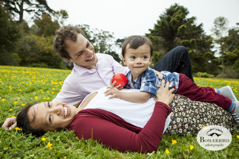 San Francisco Family Photo Session at the Botanical Gardens in Golden Gate Park. © Bowerbird Photography, 2014