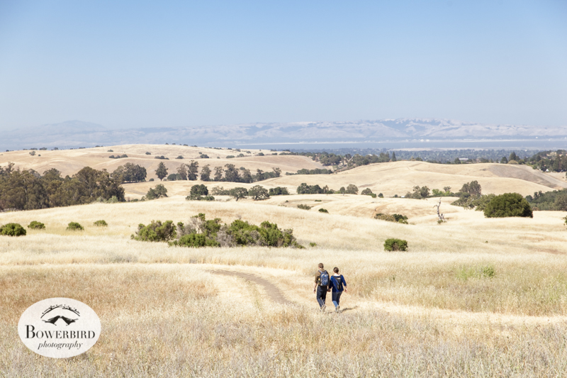 Engagement Photo Session at Arastradero Preserve in Palo Alto, © Bowerbird Photography 2014