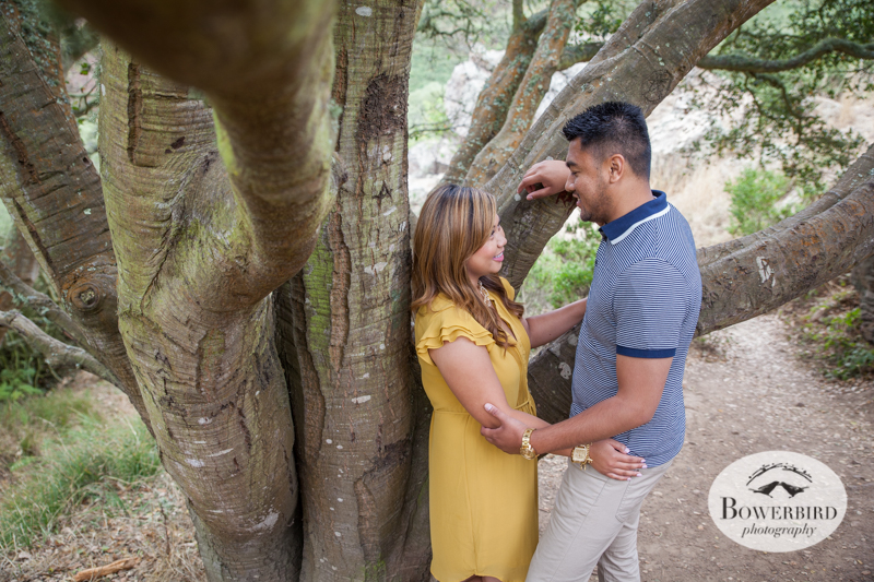 San Francisco Engagement Photo Session in Glen Canyon Park. © Bowerbird Photography 2014