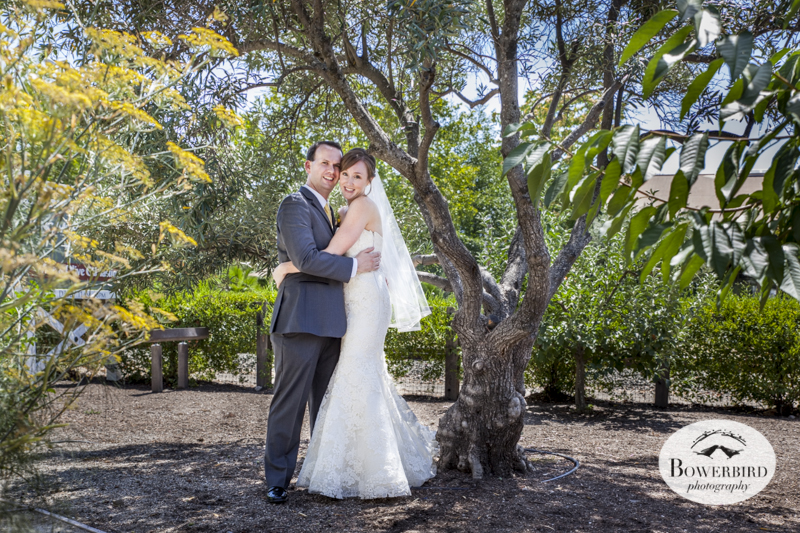 Farmstead at Long Meadow Ranch Wedding Photography in St. Helena.  © Bowerbird Photography 2014