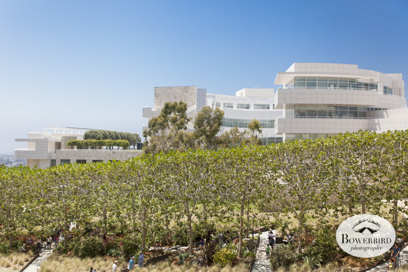 The Getty Museum in LA.© Bowerbird Photography 2014