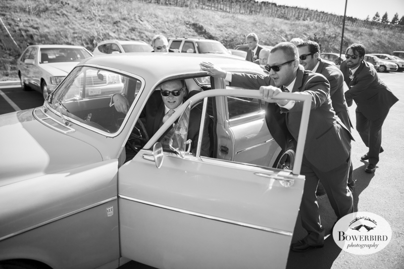 This vintage Volvo takes a little push to get going. Meritage Resort & Spa wedding. © Bowerbird Photography 2014