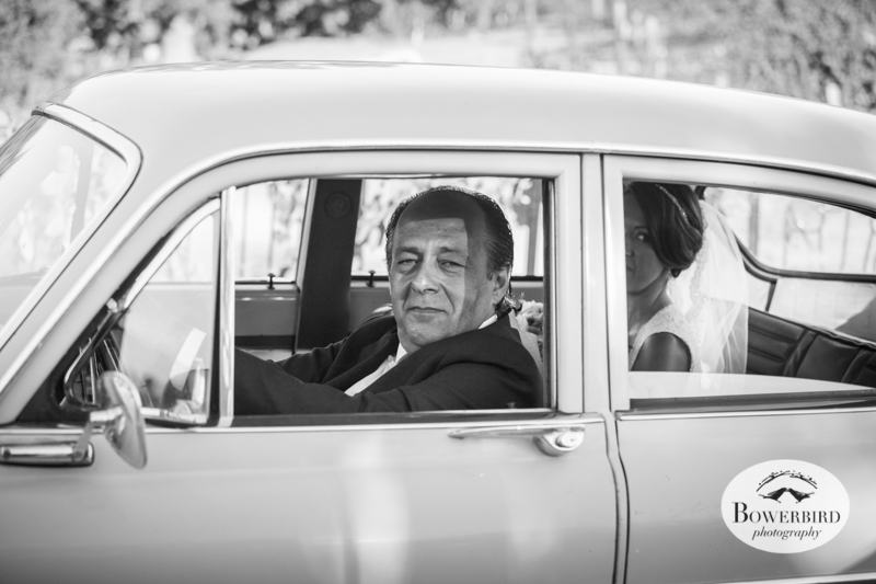 Dad drives his daughter to the wedding ceremony site among the vineyard at the Meritage.© Bowerbird Photography 2014