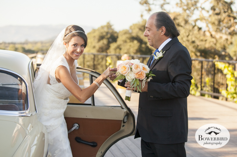 The bride gets out of the car, to walk to the ceremony. Meritage vineyards.© Bowerbird Photography 2014