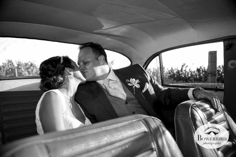 The bride and groom kiss in their getaway vintage Volvo. Meritage Resort and Spa wedding.© Bowerbird Photography 2014