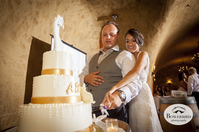 The bride and groom cut their wedding cake. Meritage resort and spa wedding reception in tasting room. © Bowerbird Photography 2014