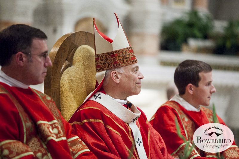 Red Mass for the St. Thomas More Society Of San Francisco at Saints Peter & Paul Church. © Bowerbird Photography 2014