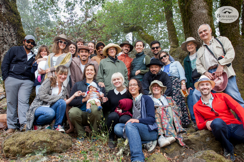 Juniper's 100 Day Celebration on Mt. Tam. © Bowerbird Photography 2015
