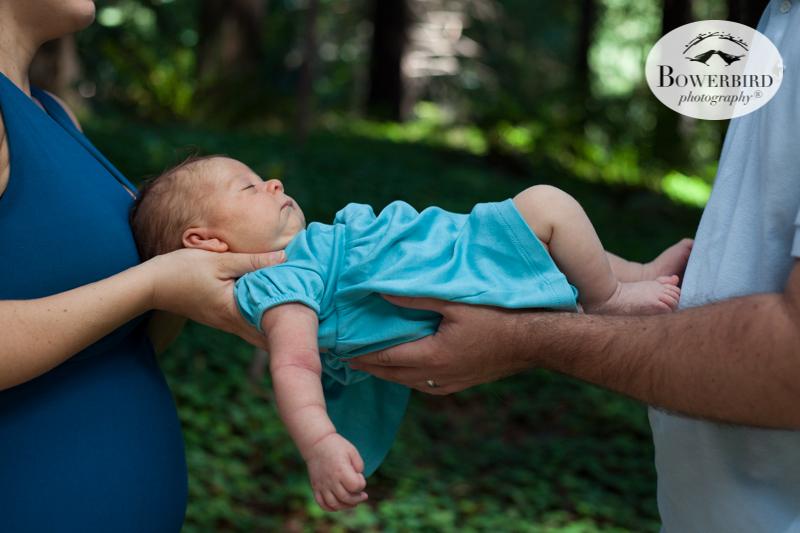 Family + Newborn Photo Session at the UC Berkeley Botanical Garden Redwood Grove. © Bowerbird Photography 2015