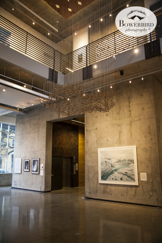 The opening of Vanishing Ice: Alpine and Polar Landscapes in Art 1775-2012 at The David Brower Center in Berkeley. © Bowerbird Photography 2016