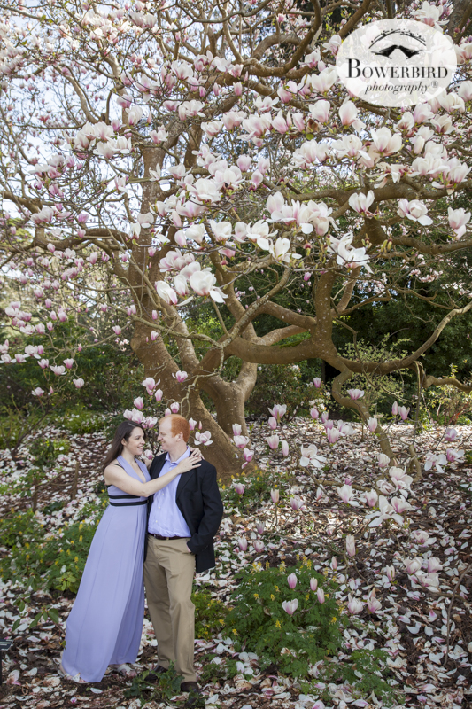 San Francisco Engagement Photography in the San Francisco Botanical Gardens & Baker Beach. © Bowerbird Photography 2016