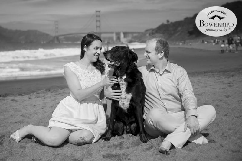 San Francisco Engagement Photography in the San Francisco Botanical Gardens & Baker Beach.© Bowerbird Photography 2016