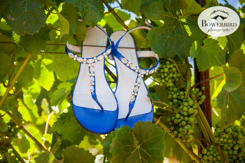 These bride's shoes are pretty and smart for a vineyard wedding.DeLoach Vineyards. Sonoma Wedding Photographer. © Bowerbird Photography 2016