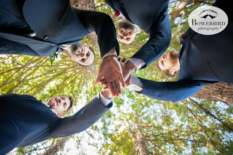 The groomsmen show teamwork at DeLoach Vineyards. Sonoma Wedding Photographer. © Bowerbird Photography 2016