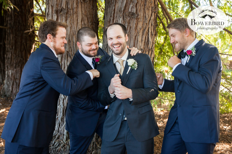 The groomsmen get playful at DeLoach Vineyards. Sonoma Wedding Photographer. © Bowerbird Photography 2016