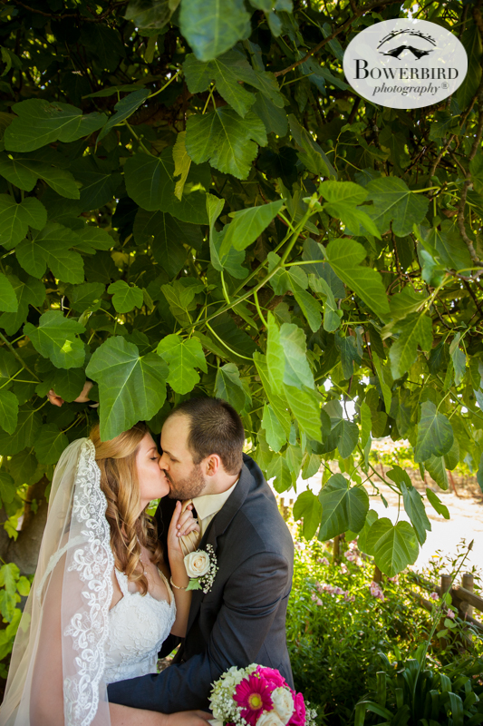 Ok. Pick me up from the floor. I've swooned! Romance at DeLoach Vineyards. Sonoma Wedding Photographer. © Bowerbird Photography 2016