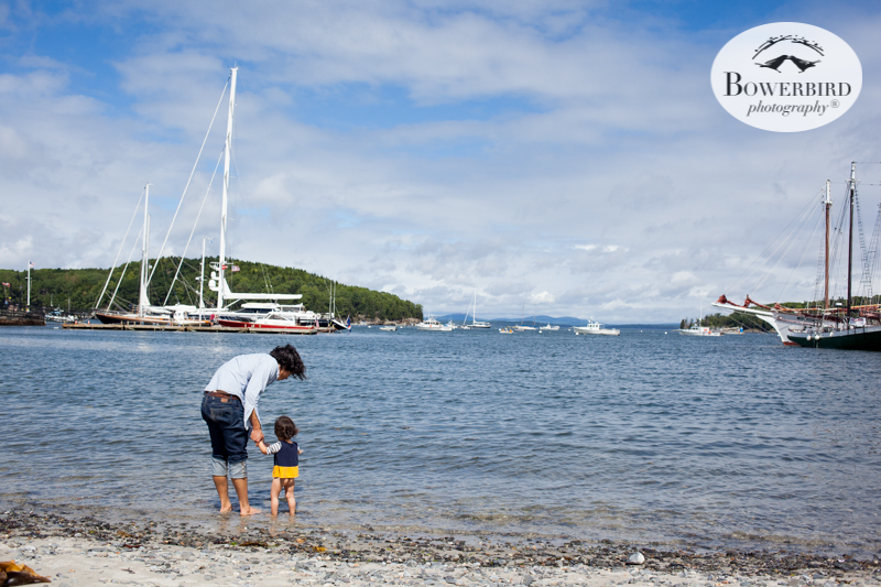 Bar Harbor, Maine. Traveling with baby in Acadia National Park, Mt. Desert Island, Bar Harbor, Maine. © Bowerbird Photography 2016