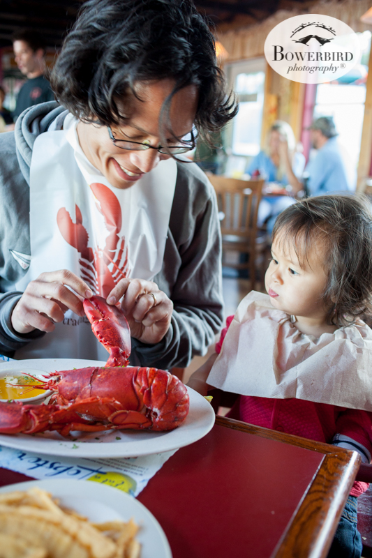 Lobster dinner at The Upper Deck, Southwest Harbor, Maine. Traveling with baby in Acadia National Park, Mt. Desert Island, Bar Harbor, Maine. © Bowerbird Photography 2016