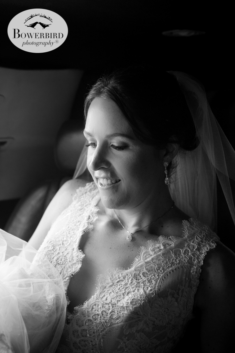 A portrait of the bride. © Bowerbird Photography 2016