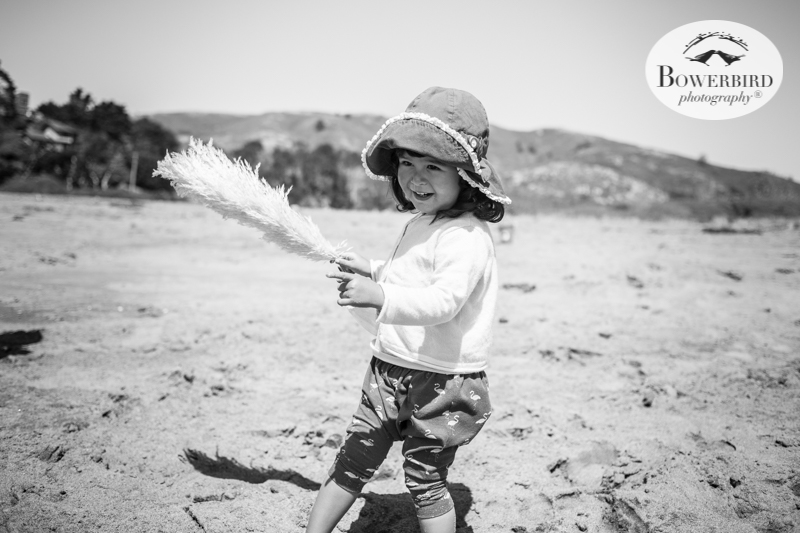 0012family travel blog muir beach baby roadtrip © Bowerbird Photography 2017.jpg