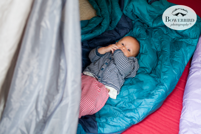 0012camping with kids in california samuel p taylor and bolinas © Bowerbird Photography 2017.jpg
