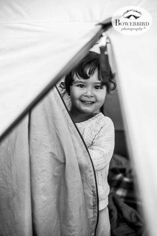 0027camping with kids in california samuel p taylor and bolinas © Bowerbird Photography 2017.jpg