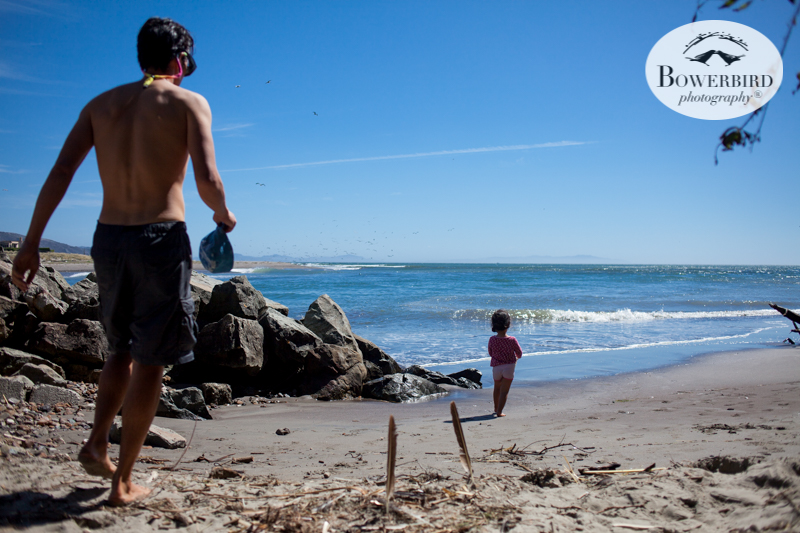 0034camping with kids in california samuel p taylor and bolinas © Bowerbird Photography 2017.jpg