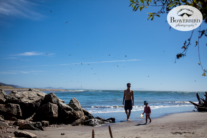 0035camping with kids in california samuel p taylor and bolinas © Bowerbird Photography 2017.jpg