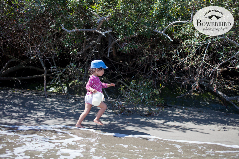 0038camping with kids in california samuel p taylor and bolinas © Bowerbird Photography 2017.jpg