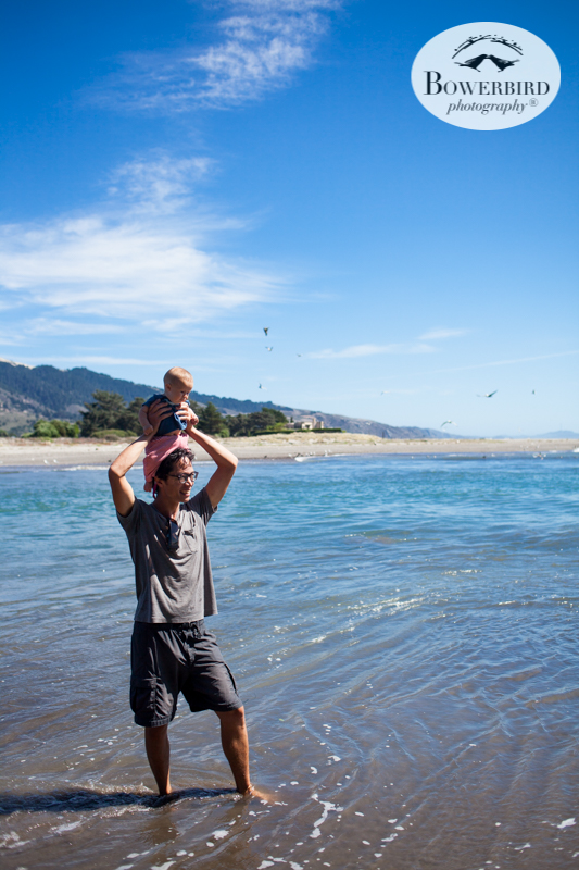 0040camping with kids in california samuel p taylor and bolinas © Bowerbird Photography 2017.jpg