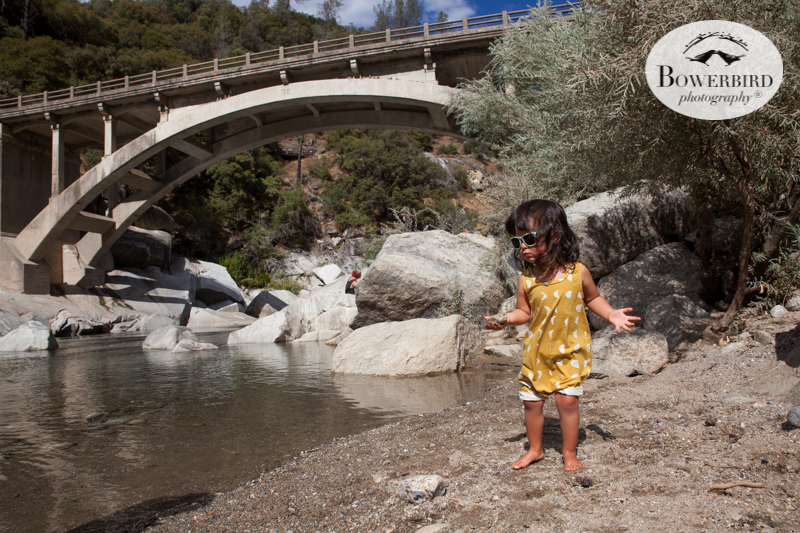 0003 travel with kids california yuba river © Bowerbird Photography 2017.jpg