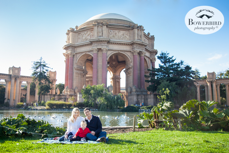 0036San Francisco Family Photography Palace of Fine Arts © Bowerbird Photography 2017.jpg