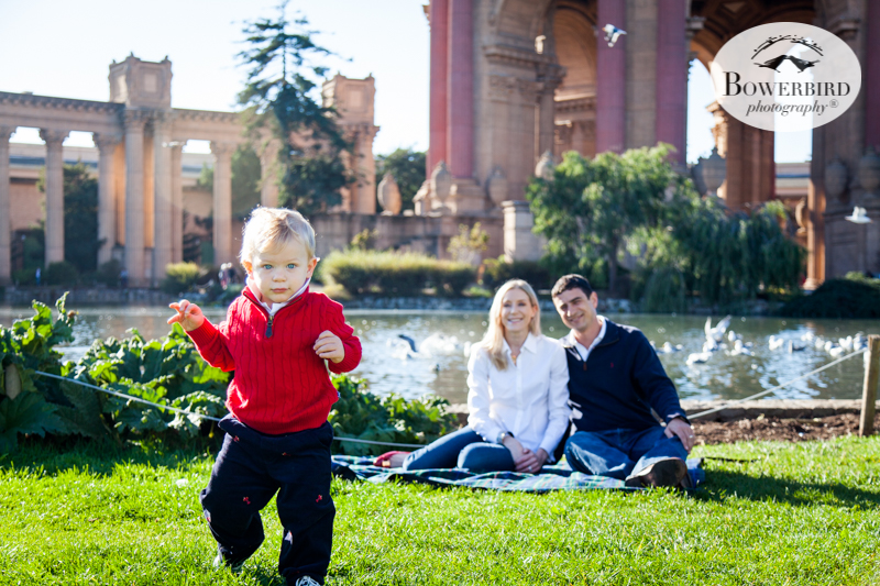 0045San Francisco Family Photography Palace of Fine Arts © Bowerbird Photography 2017.jpg