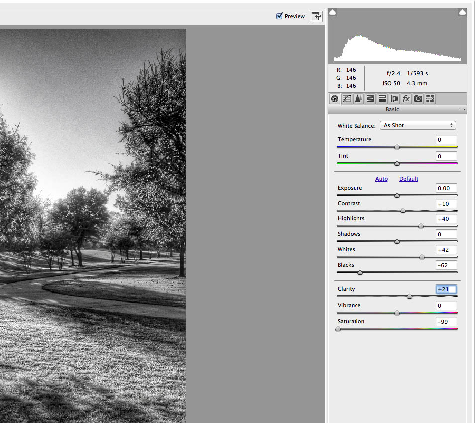 camera-raw-edits zoom.jpg