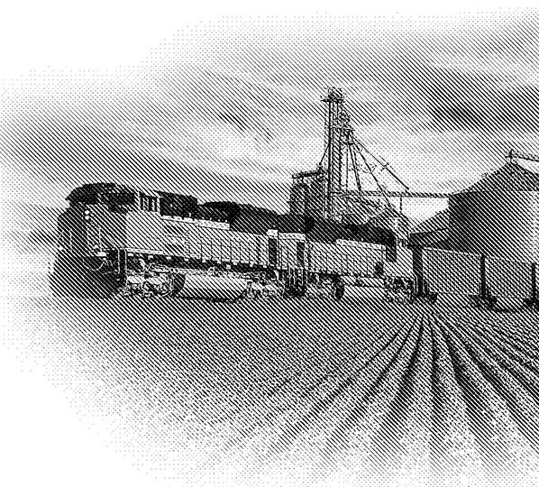BTB_train_D.jpg