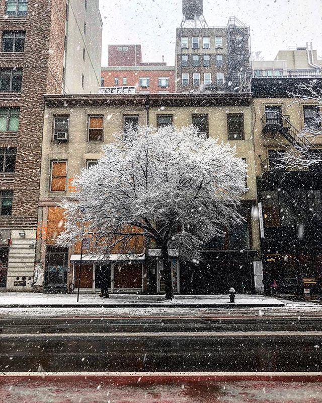 #Winter won't leave. #NYC