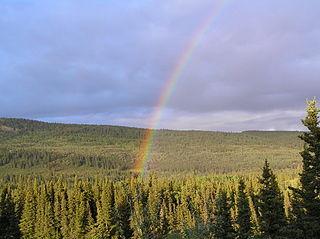 320px-Rainbow_over_a_forest_in_Alaska_(3_June_2005).jpg