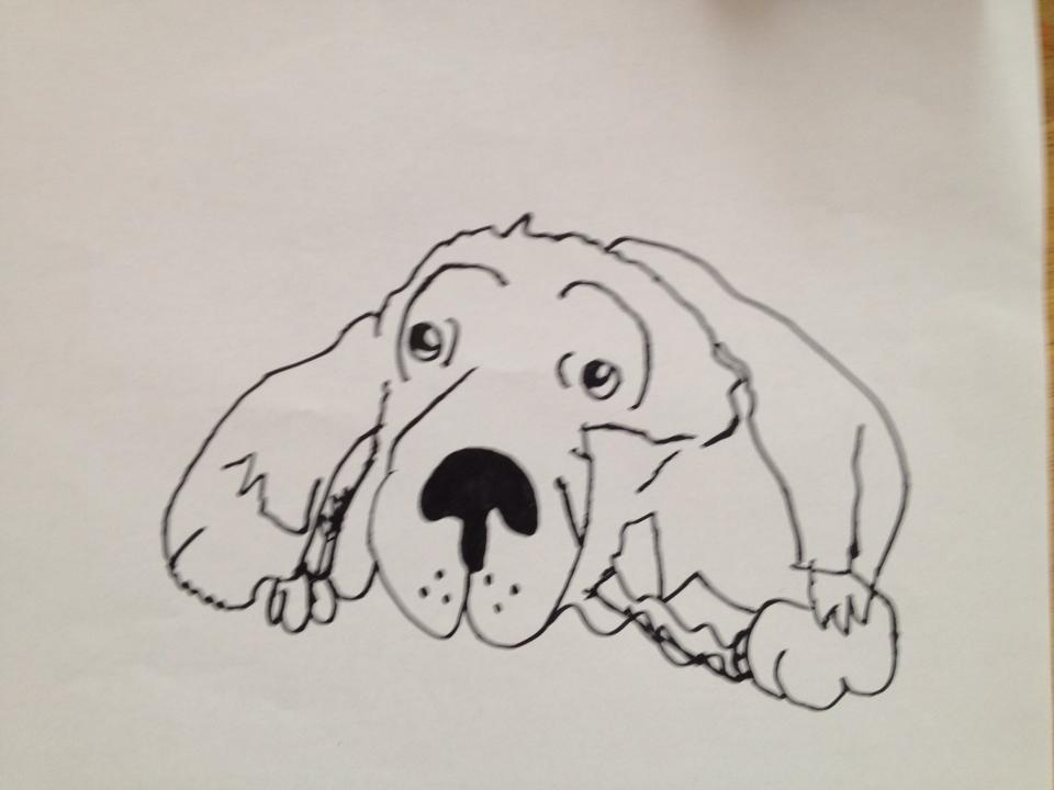 Ema (9) Dog 2