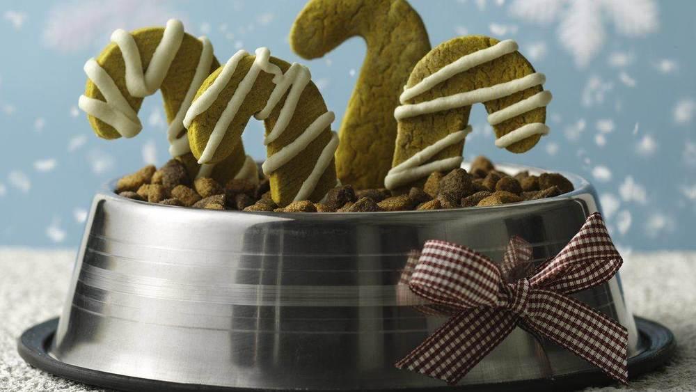 Gluten-Free Peanut Butter and Pumpkin Puppy Treats